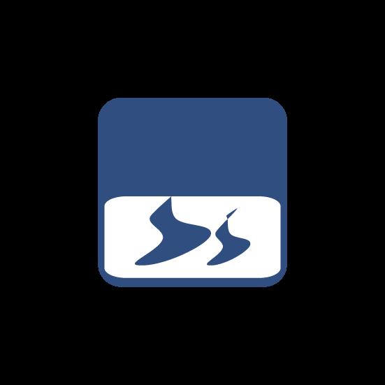 Icon Emulsifiers - Dispersants